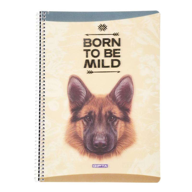 Тетрадка Mild куче с черен акцент, А 4, 80 листа, широки редове, беж  176408