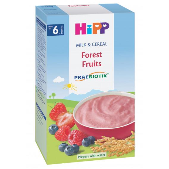 Био млечна каша горски плодове, 6+ месеца, кутия 250 гр. Hipp 19624
