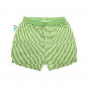 Къси памучни панталони за бебе - унисекс Boboli 25591