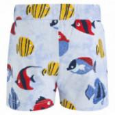 Памучен къс панталон за момче Tuc Tuc 34495 2
