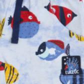 Памучен къс панталон за момче Tuc Tuc 34496 3