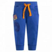 Памучен спортен панталон за момче Tuc Tuc 34578