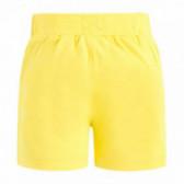 Памучен къс панталон за момче Tuc Tuc 34630 2