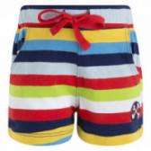 Памучен къс панталон за момче Tuc Tuc 34692