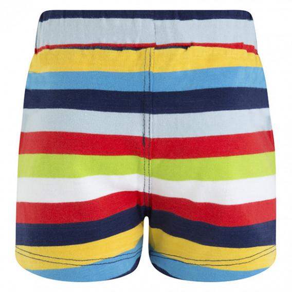 Памучен къс панталон за момче Tuc Tuc 34693 2