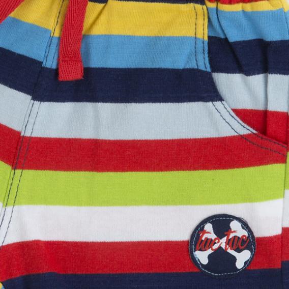 Памучен къс панталон за момче Tuc Tuc 34694 3