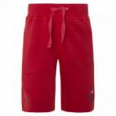 Памучен къс панталон за момче Tuc Tuc 34815