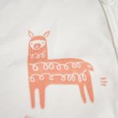 памучно боди за бебе унисекс Pinokio 94442 4